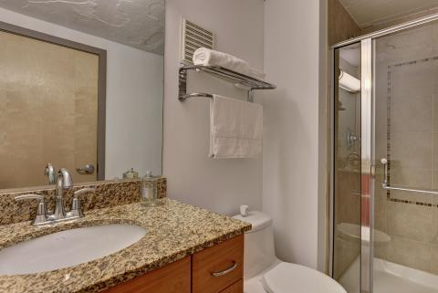condo-downtown-cleveland-oh-master-bath-American-Book.jpg